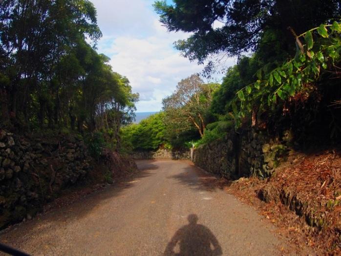 Pedala Açores - Terceira