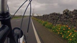 Primavera nos Açores - Pedalaçores